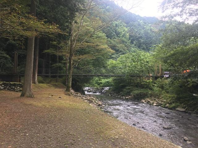 対岸から撮影した吊り橋