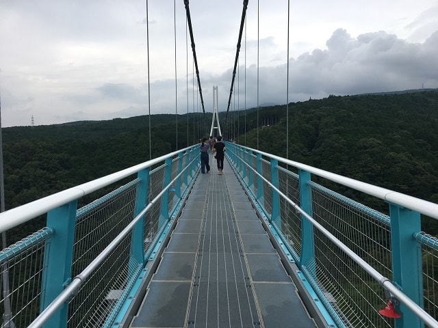 三島スカイウォーク 吊り橋の上から