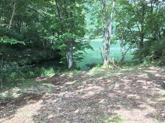 田貫湖キャンプ場 Cサイト湖側の眺め♪