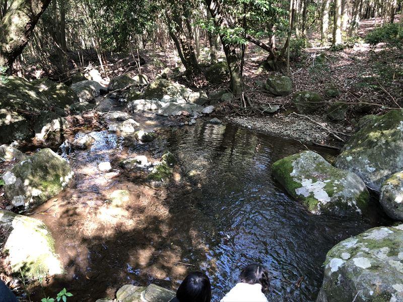 市民の森 小川