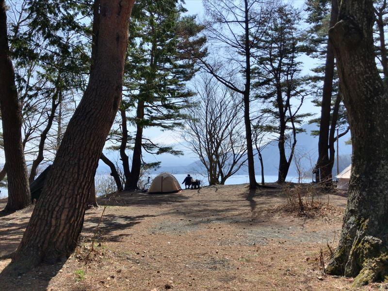 庵キャンプ場 林間サイト02林間部湖側