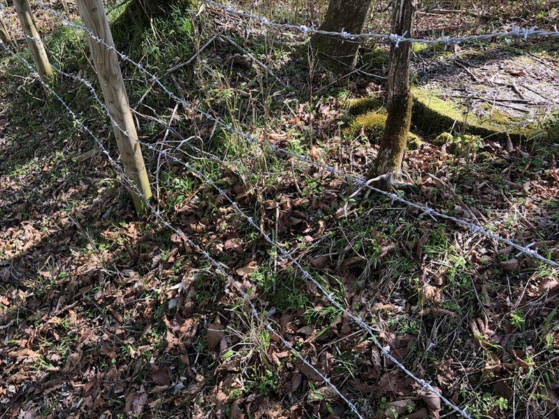 十里木キャンプ場 隣接する別荘地との境に有刺鉄線