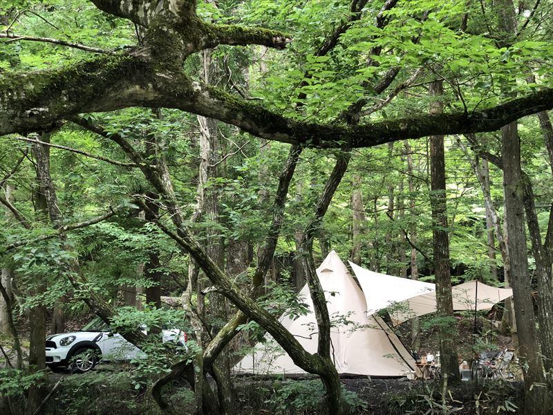 道志の森キャンプ場 サイト02