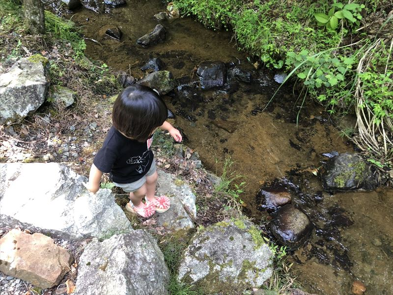 道志の森キャンプ場 川