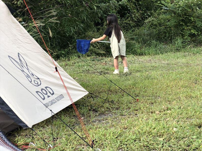 西湖自由キャンプ場で虫取り01