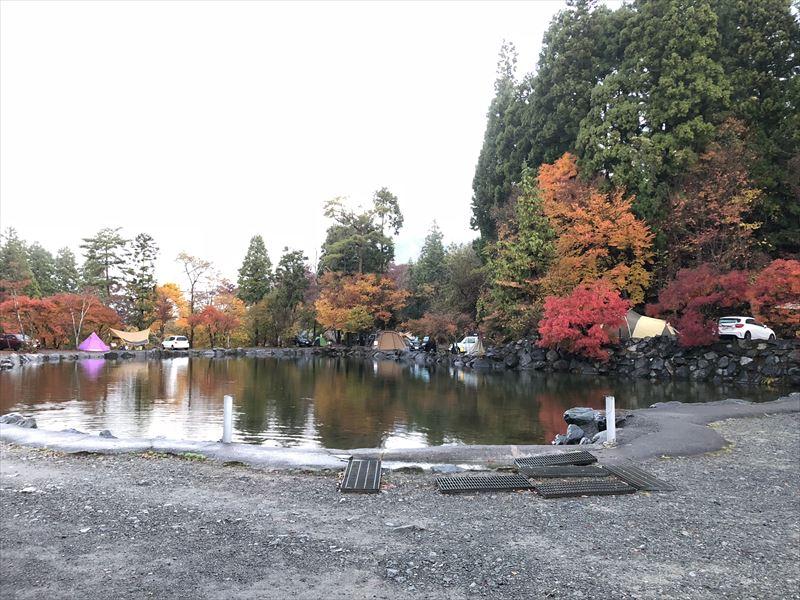 道志の森キャンプ場 プールサイトの紅葉