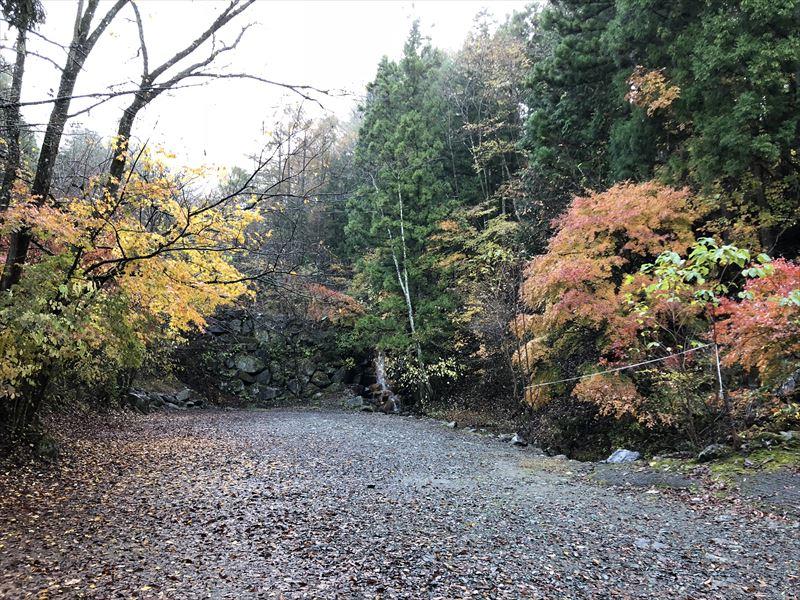 道志の森キャンプ場 前回利用した滝サイトの紅葉