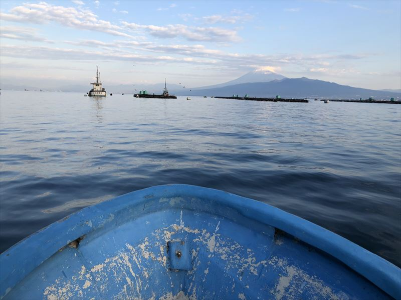 ボートで海釣り 立保港と富士山