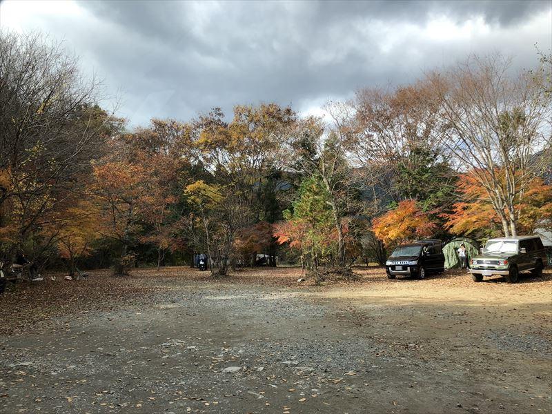 道志の森キャンプ場 初めて音連れ田際に利用したイトの紅葉