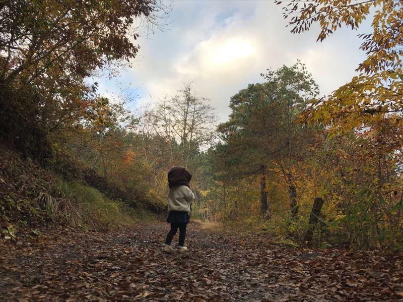 道志の森キャンプ場 グラウンド上部