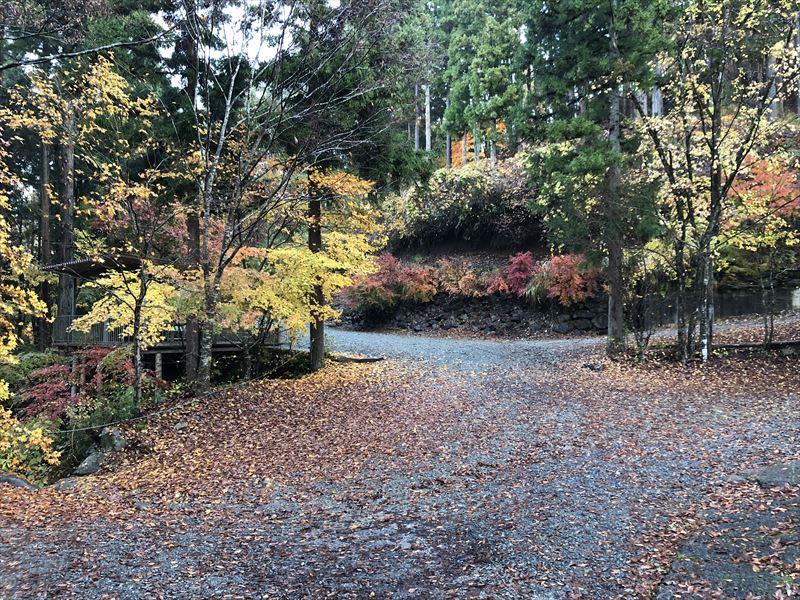 道志の森キャンプ場 滝サイト手前の分岐点は紅葉が綺麗