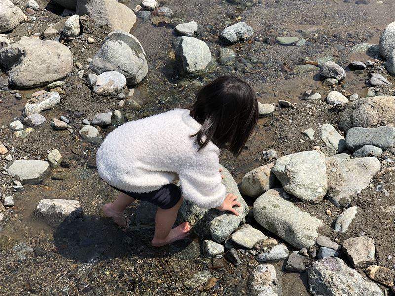 青野原オートキャンプ場 道志川で水遊び