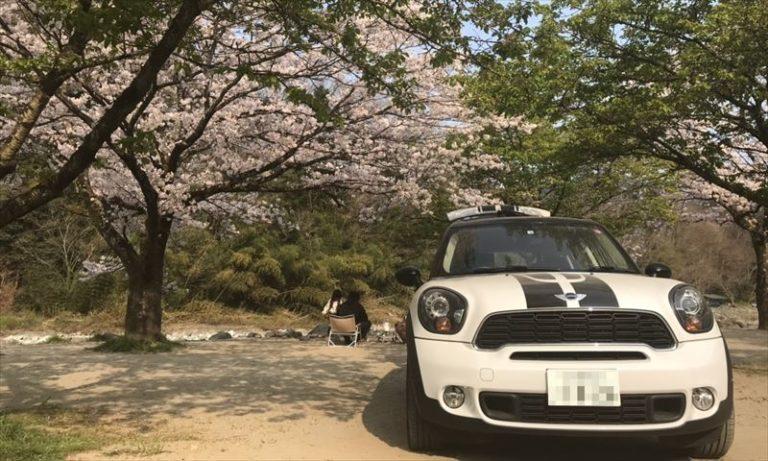 青野原オートキャンプ場 桜&ミニクロスオーバー