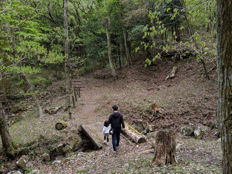 沼津市市民の森 場内を散策