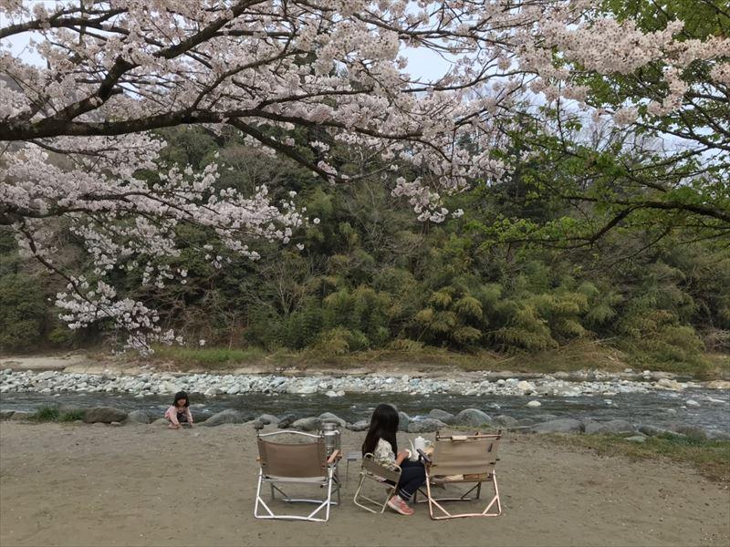 青野原オートキャンプ場 最後はCサイトでお花見