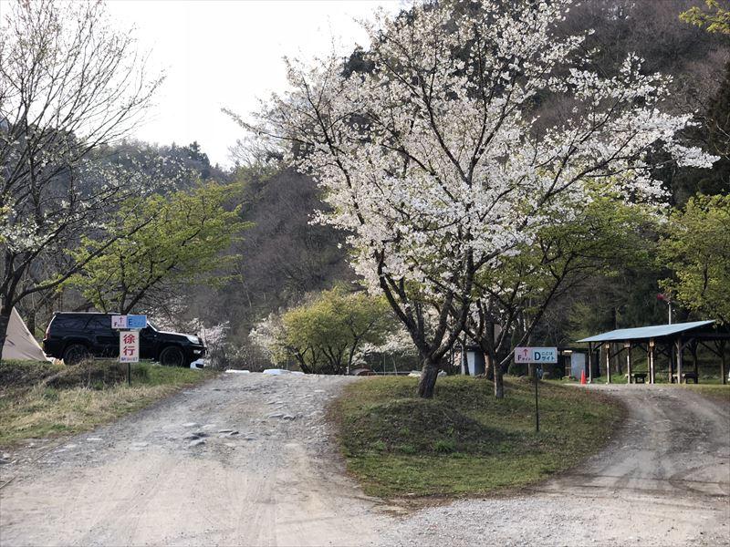 青野原オートキャンプ場 Dサイト&Eサイト