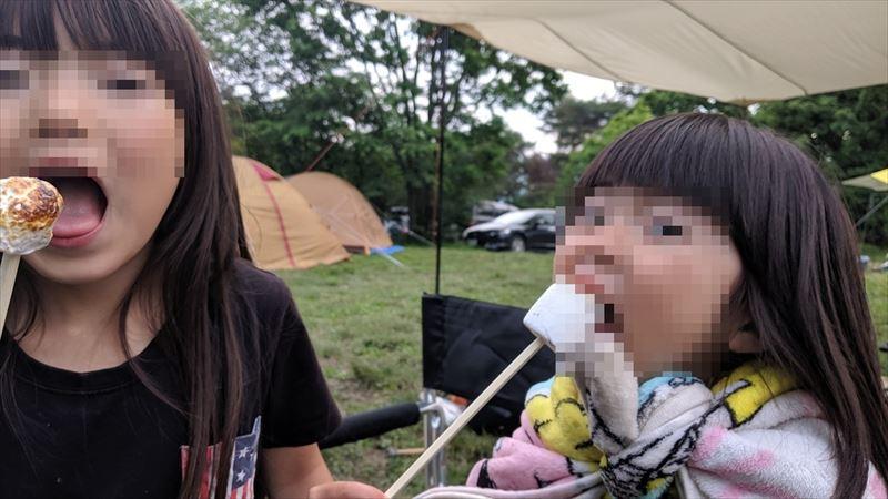 朝霧ジャンボリーオートキャンプ場 マシュマロ