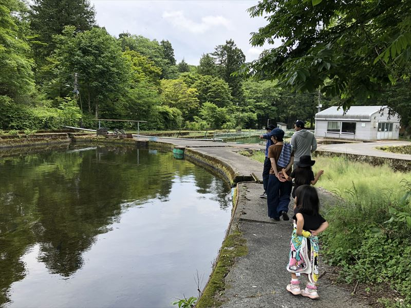 富士養鱒漁業協同組合直営釣り堀 03