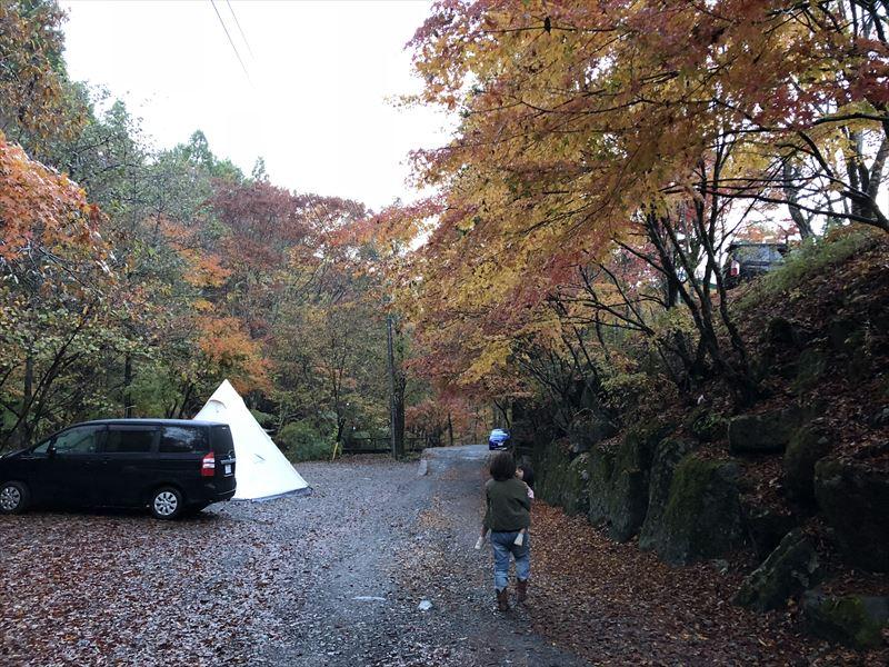 道志の森キャンプ場 管理棟からプールへ続く道の紅葉 01