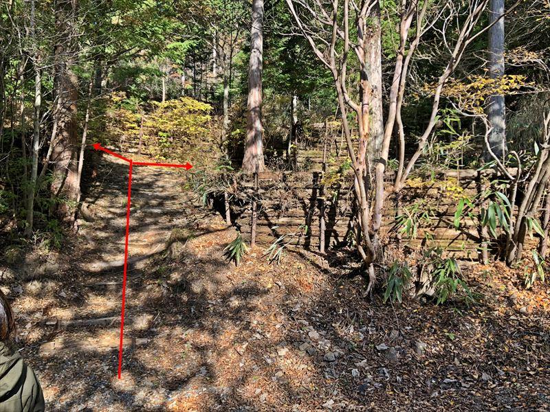 藤川キャンプヒルLUNA・Luna サイト49、50に続く階段(51サイト側から)
