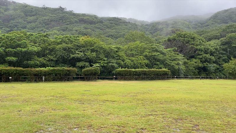 沼津市 市民の森で雨キャンプ 01